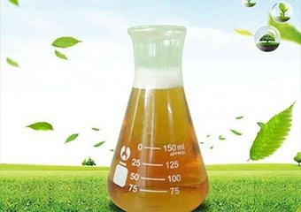 山东生物酶